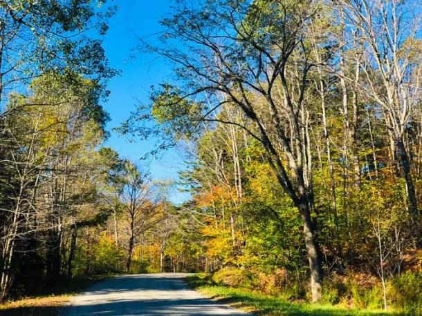 Foliage em Vermont