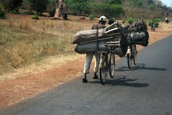 Charcoal Malawi