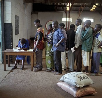 Fertiliser subsidy malawi