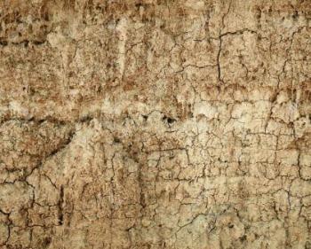 Wall of soil