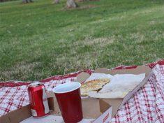 malawi picnic