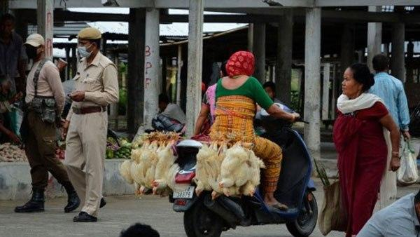 13 lakhs of chickens were slaughtered