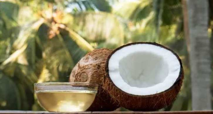 how coconut oil could reduce risk of heart disease
