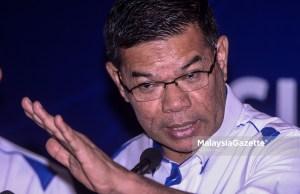Datuk Seri Saifuddin Nasution Ismail