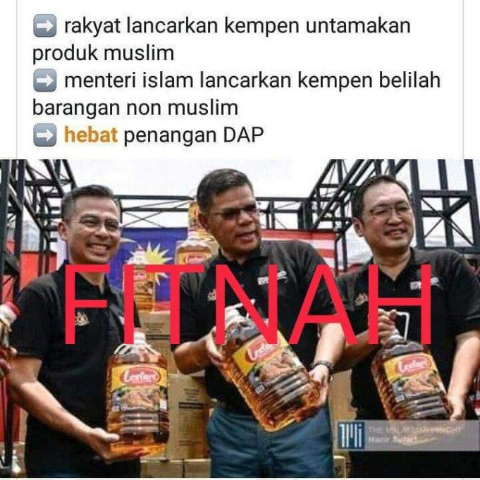 Saifuddin Nasution Ismail