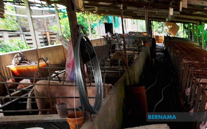 Dua kes JE dikesan di Pulau Pinang