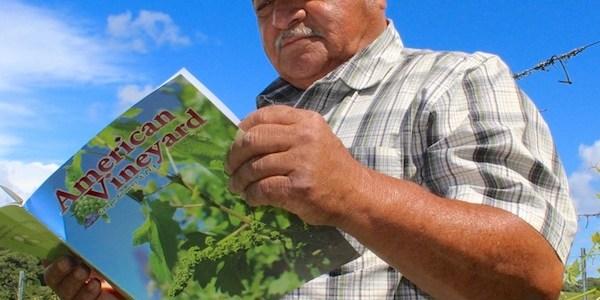 -Frank Villanueva, <em>Carneros AVA Wine Grape Grower</em>