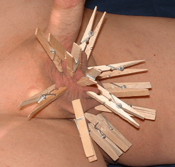 clothespins on lion's balls