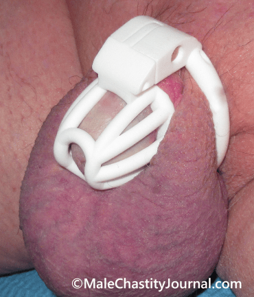 my penis in the new custom cage
