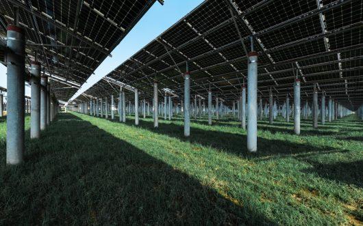 Optimized-solar-energy-686WBCP