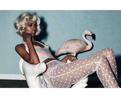 pink flamingos malesoulmakeup