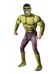 The Hulk adult male costume