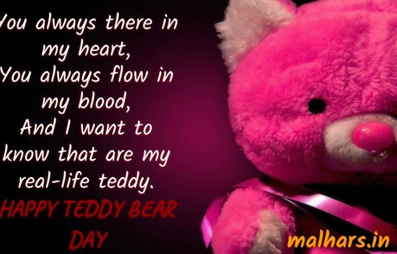 TEDDY_DAY_SHAYARI