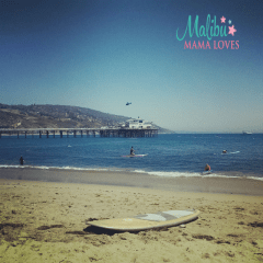 Conscious Living – Happy Memorial Day 2016 From Malibu