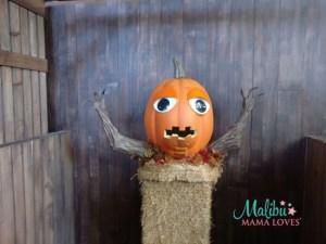 knotts spooky farm