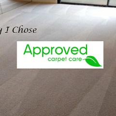 Why I Chose Approved Carpet Care – A Review