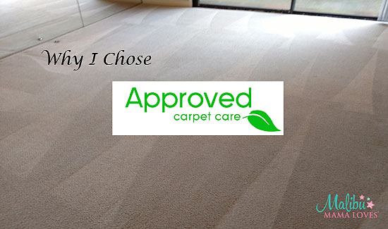 approved carpet care