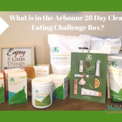 What is in the Arbonne 28 Day Clean Eating Challenge Box?