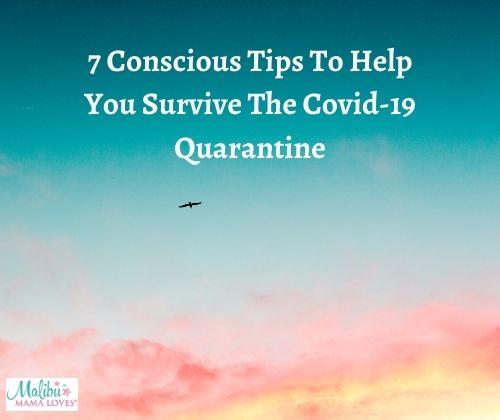 survive-the-covid-quarantine