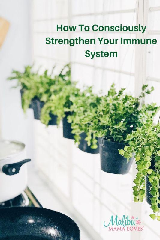 strengthen-immune-system