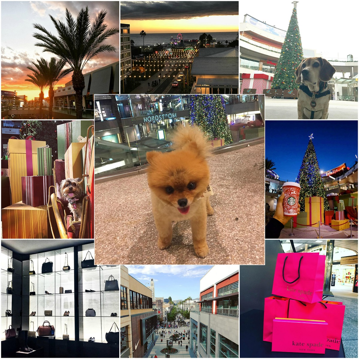 A Day of Shopping at the Santa Monica Place Mall