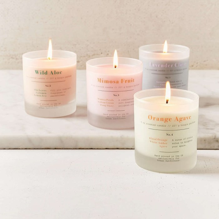 Top Candles of the Day for Gifts & Home Decor