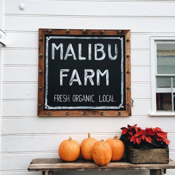 malibu-farm-sign-holidays-by-roseeposey-12-1-2016-1