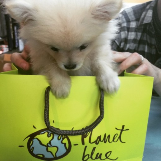 shop-planet-blue-shopping-bag-puppy-dog-by-malibusniper-12-22-2016-1