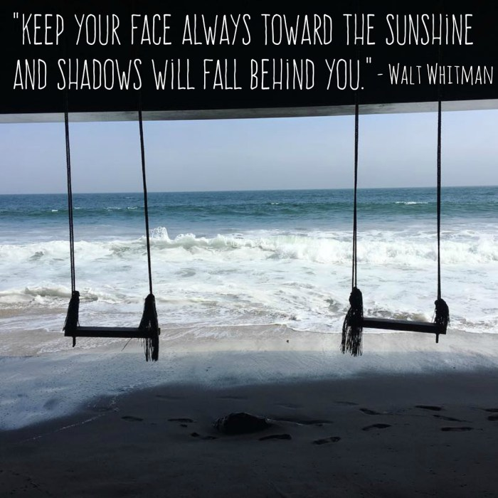 """""""Keep Your Face Always Toward the Sunshine and Shadows Will Fall Behind You."""" – Walt Whitman"""