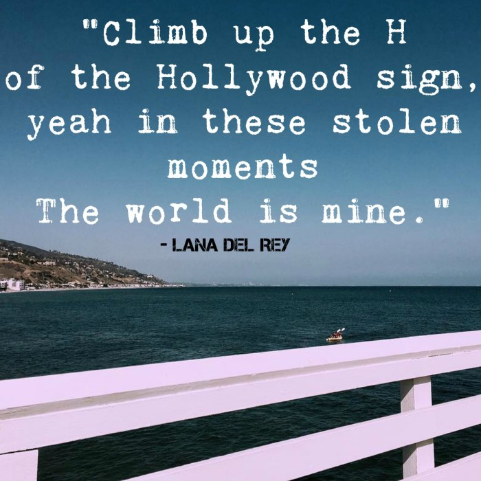 """Climb up the H of the Hollywood sign, yeah In these stolen moments The world is mine."" – Lana Del Rey"