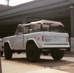 Unicorn Ford Bronco