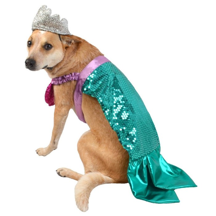Mermaid Dog Costume Set by Hyde & Eek Boutique