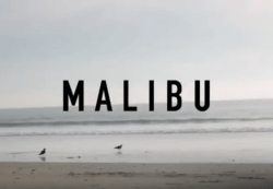 Malibu California Dreamin Dance on the Beach