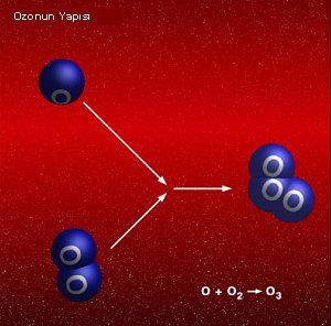 Terapi Ozon (1/3)