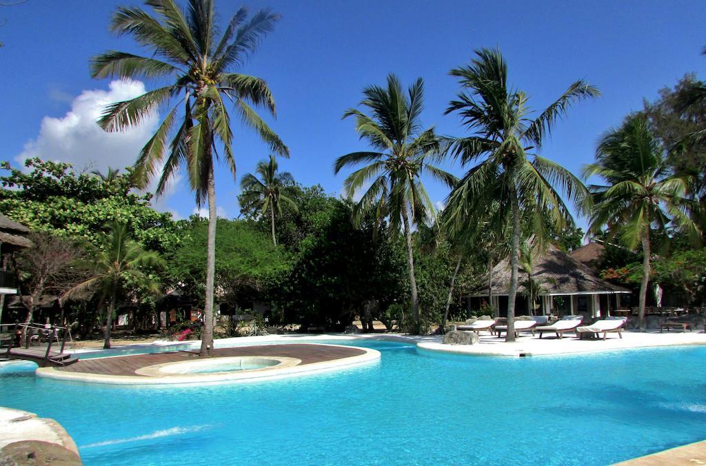 white elephant 29776781 - Stanco delle spiagge di Malindi, visita questi 6 posti per cambiare