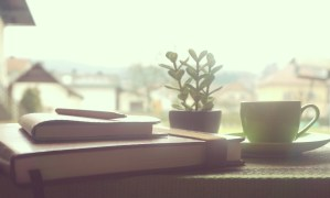 Coffee, notebooks, succulents, short stories