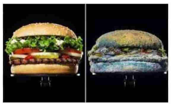 Burger King Sandwiches