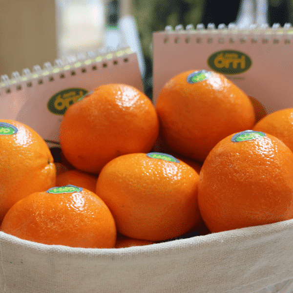 Jaffa Mandarins 松皮桔 3 LB