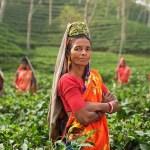 Sin mullers no bi habría medio rural