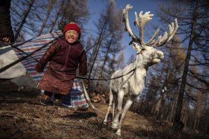 Niña dukha jugando junto a un reno. (Fuente: Imgur)