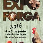 Os chueves d'Expoforga