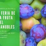 V Feria de la Fruta Valle del Manubles