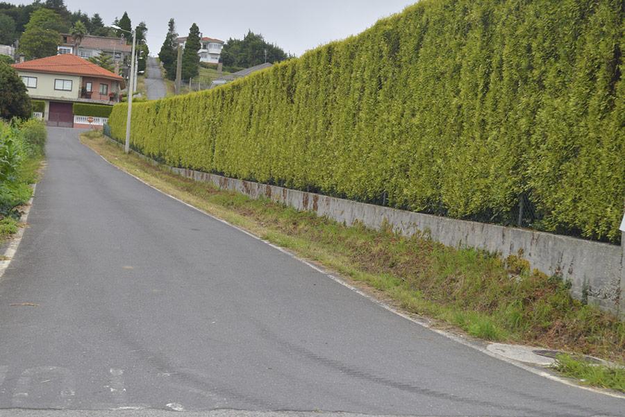 desbroce-en-carreteras-vias-pistas_07