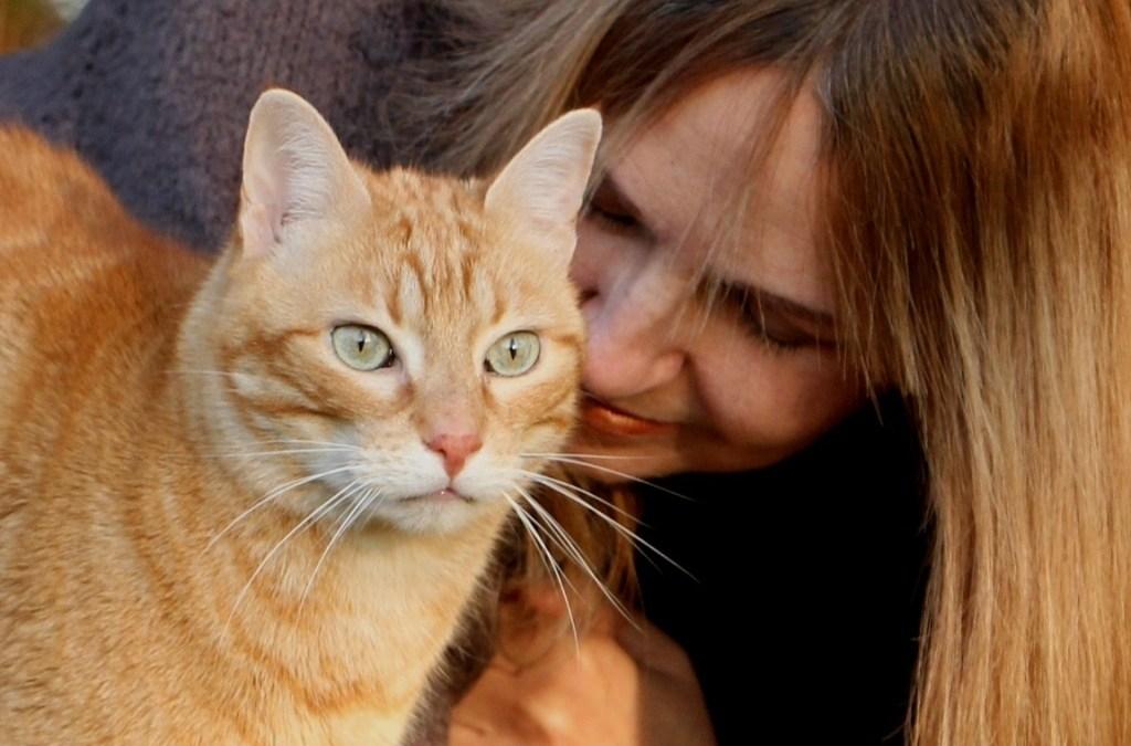 Workshop Grundlagen der Tier-Kommunikation