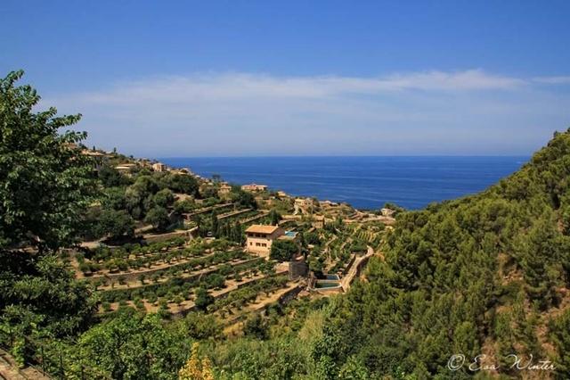 Mallorca 05