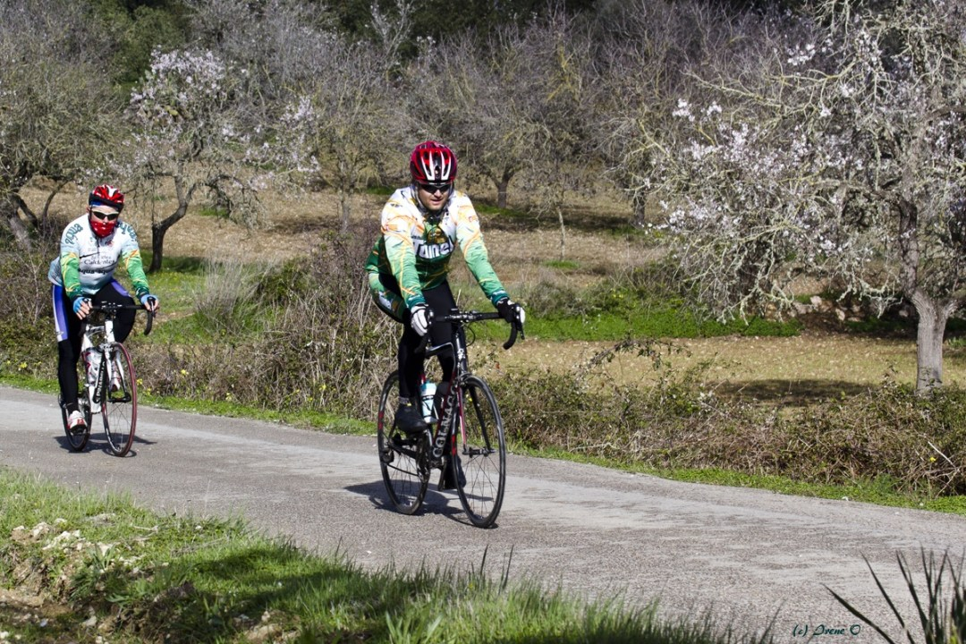 Bike-Touren in Mallorca