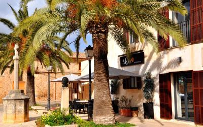 Restaurant Anoa Santanyi