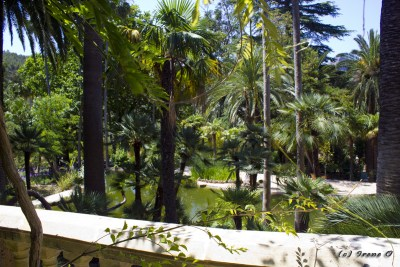 Jardins de Alfabia