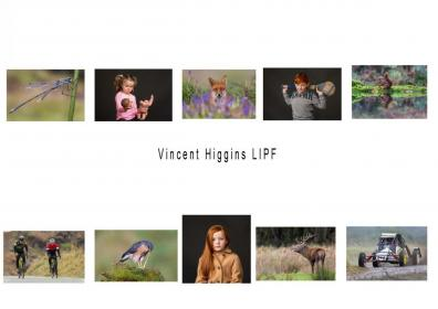 LIPF 2020 Vincent Higgins