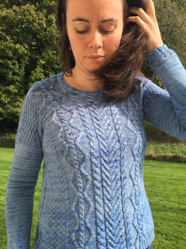 Paridae, pull au tricot
